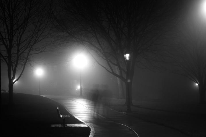 fogphoto-1421885568509-8d5319e54d89